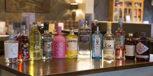 A 17-day gin festival is coming to The Gryhound in Bridport