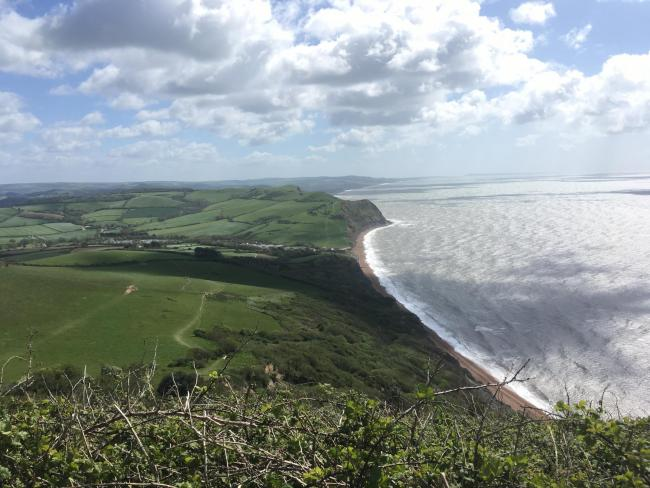 Explore the highest point of England's south coast (and its stunning views!)