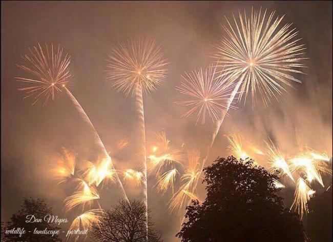 Bridport Round Table is once again holding a fireworks display at Bridport Leisure Centre with all invited, Picture: DON MAPES/ECHO CAMERA CLUB
