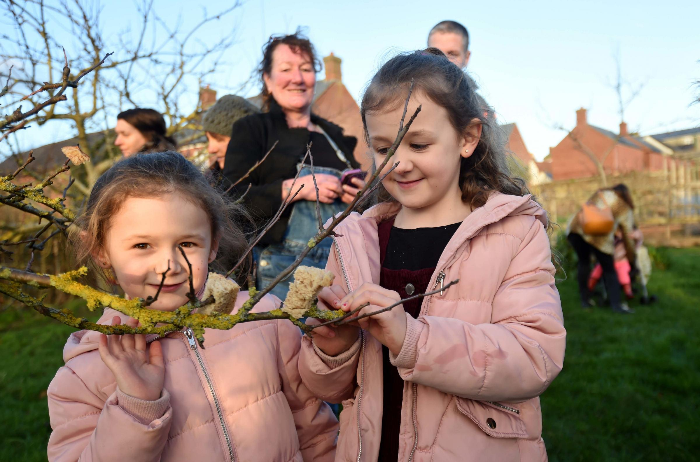 Bridport Community Orchard's Wassailing event huge success