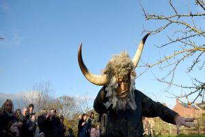 PICTURES: Hundreds turn out to Wassail in the orchard