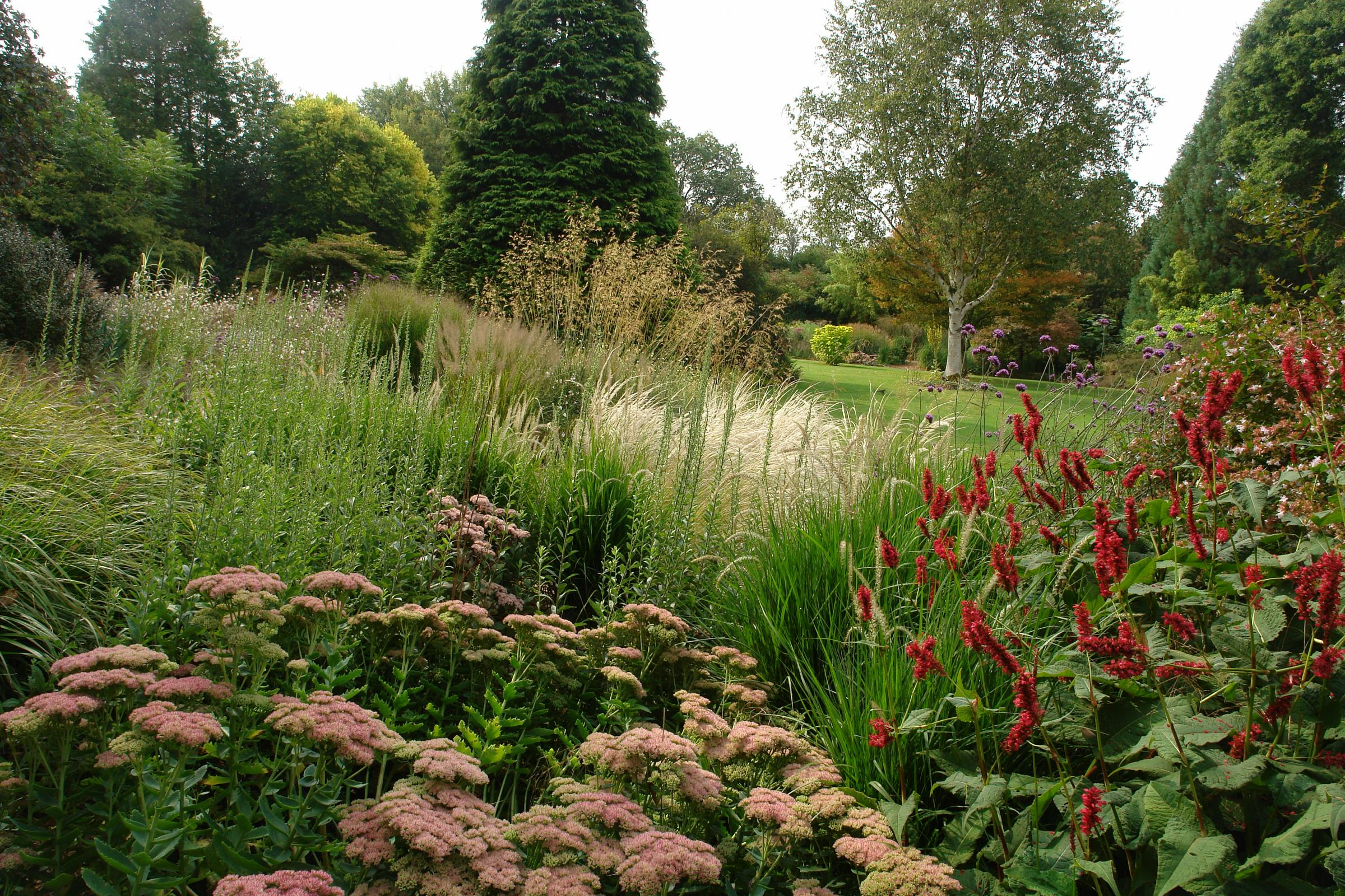 Foundation Friday; NGS Open Day