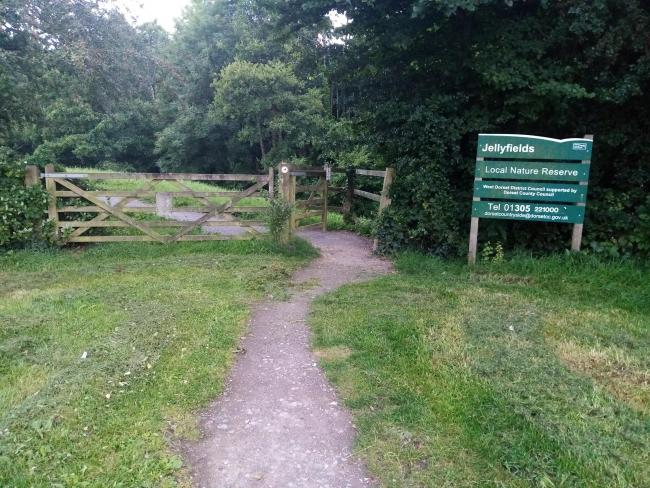 Have your say on Bothenhampton and Jellyfields nature reserves