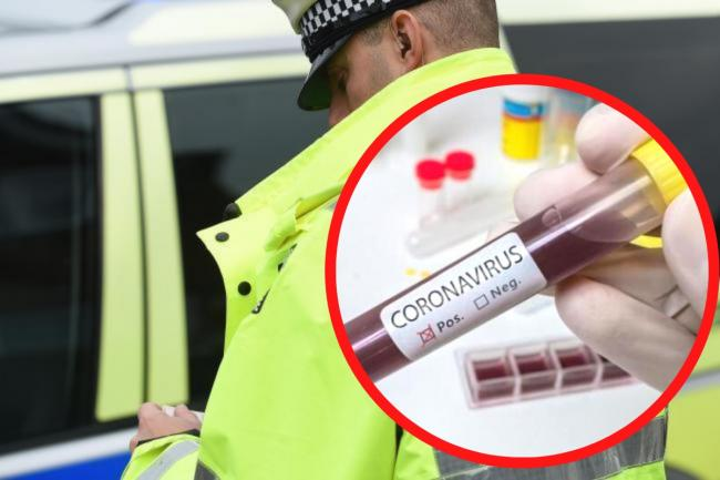 Dorset Police has issued more than 1000 fines for coronavirus lockdown breaches