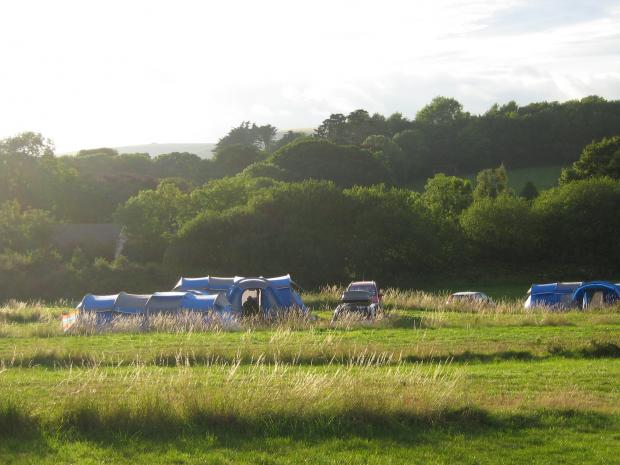Bridport and Lyme Regis News: Osmington Mills Corner Campsite in the top 10 best-selling sites in the UK Photo: pitchup.com