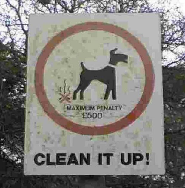 Vet warns residents to clean up after their pets