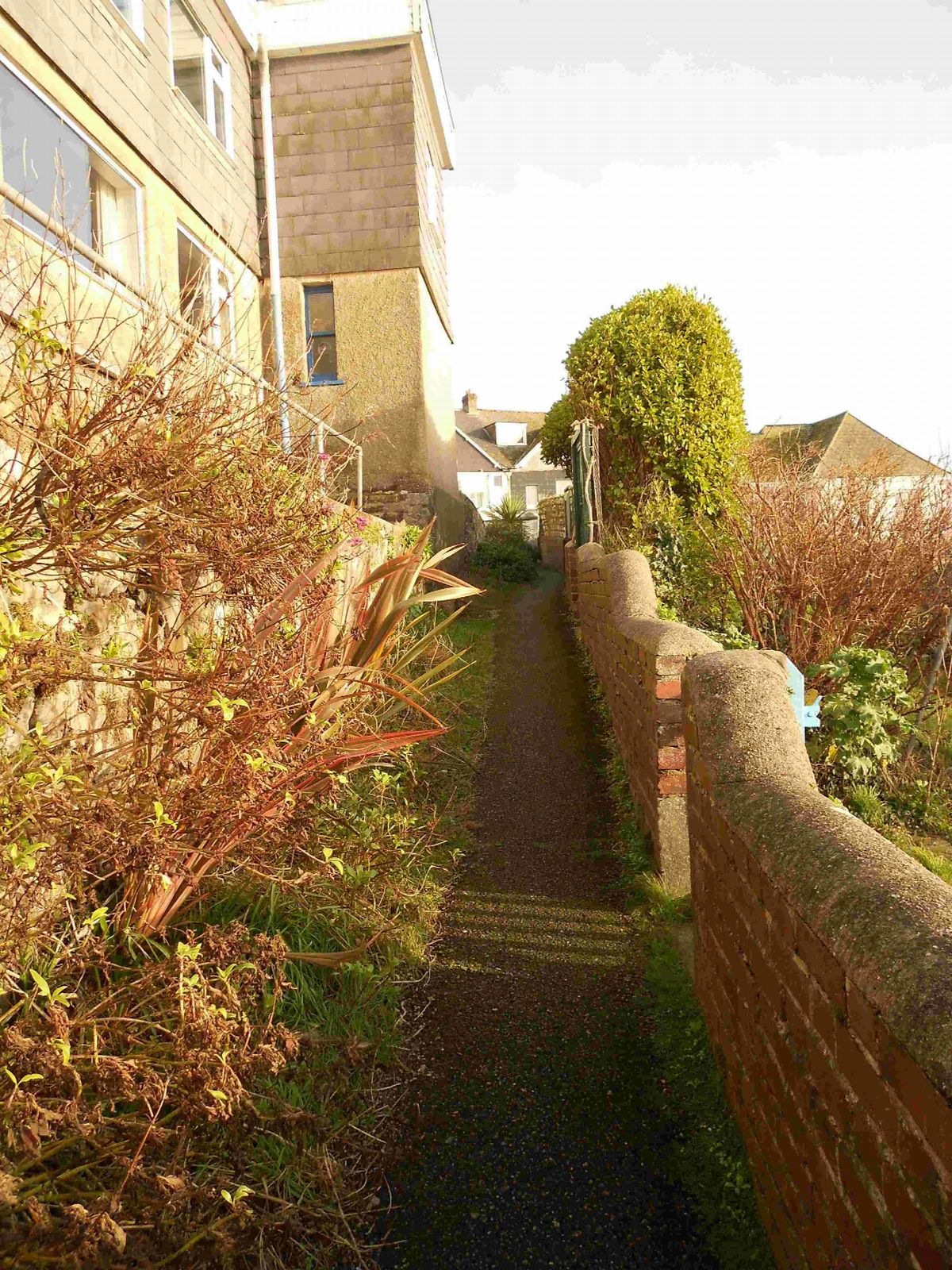 CONTROVERSY: Teneriffe Path in Lyme Regis