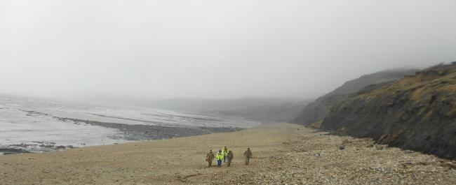 UPDATED :Bomb squad called to Charmouth beach