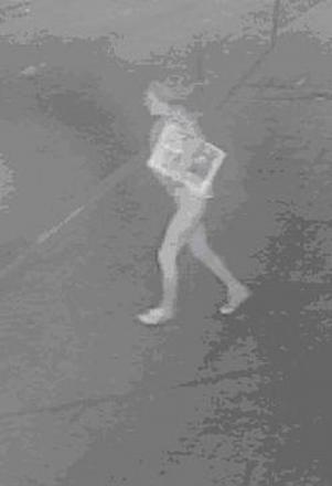 Police release CCTV images of newspaper thief