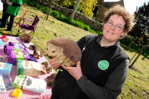 WE LOVE MEALWORMS:  Sadie James from Groves Nursery with an ornamental hedgehog