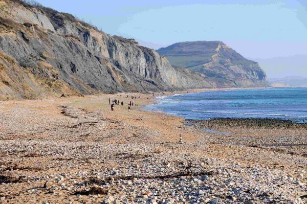 CELEBRATION: Charmouth beach looking towards Golden Cap