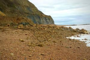 Coastguard issues warning following cliff fall in west Dorset