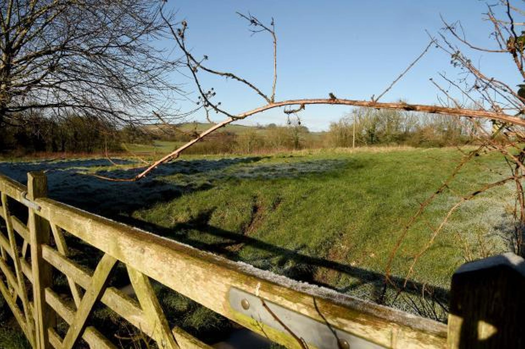 new homes will ruin our village