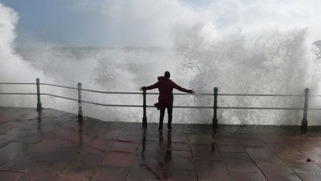 Trees down and power outages as Storm Eleanor hits West Dorset