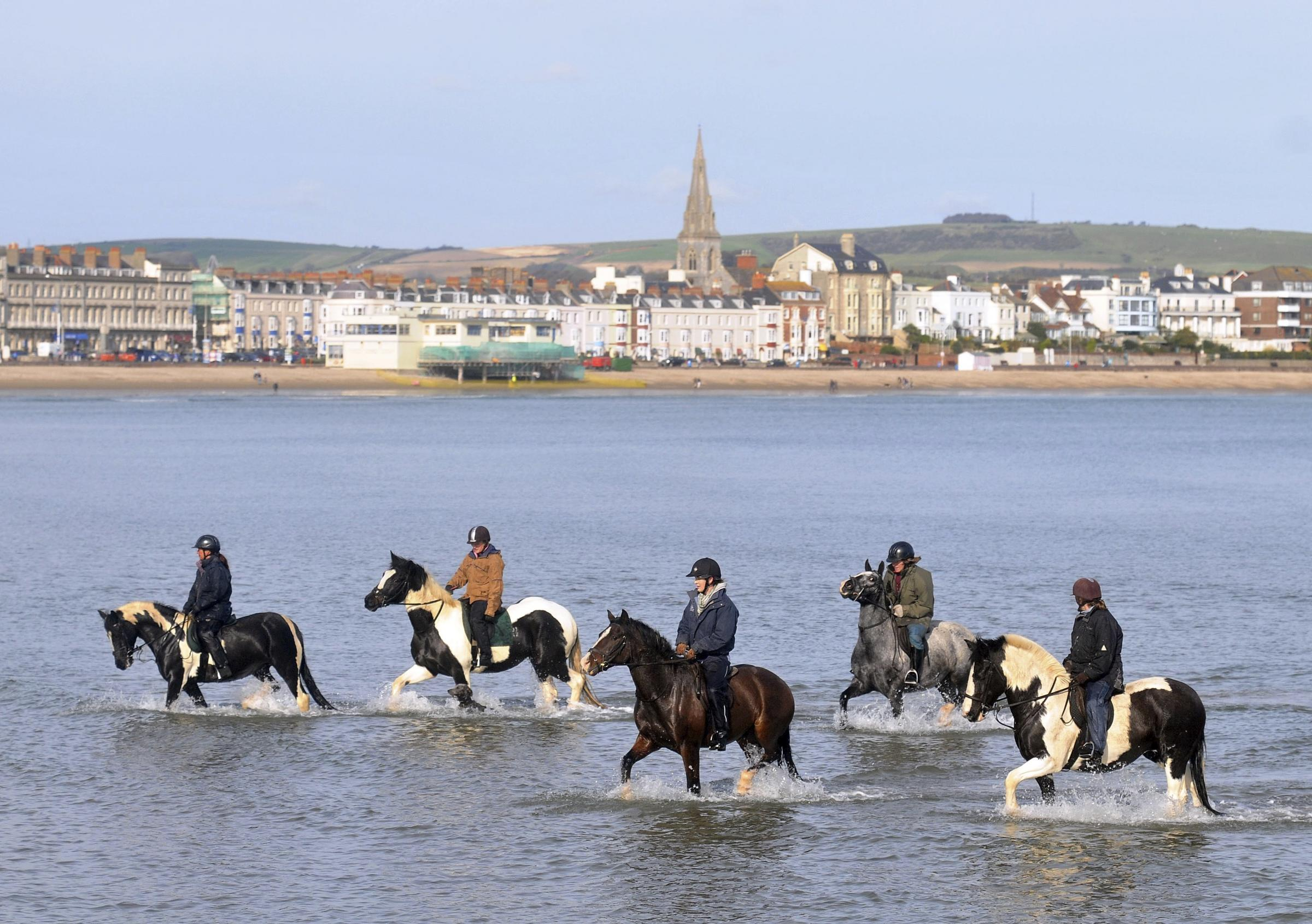Horses cool off on a sunny Weymouth beach, 291008, Picture: FINNBARR WEBSTER/F7703