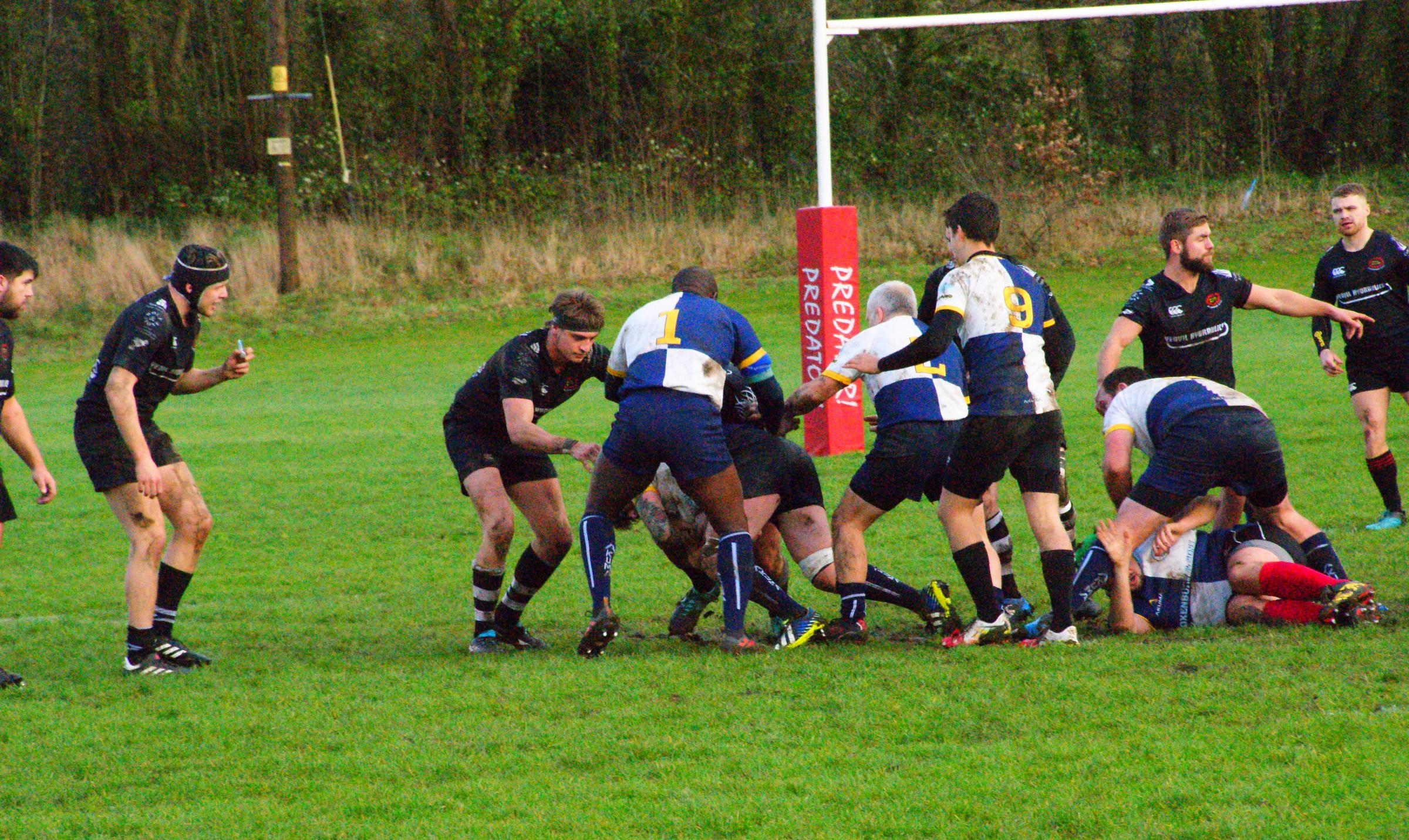 Bridport rugby Blues forwards drive on Picture: STUART BRIGGS