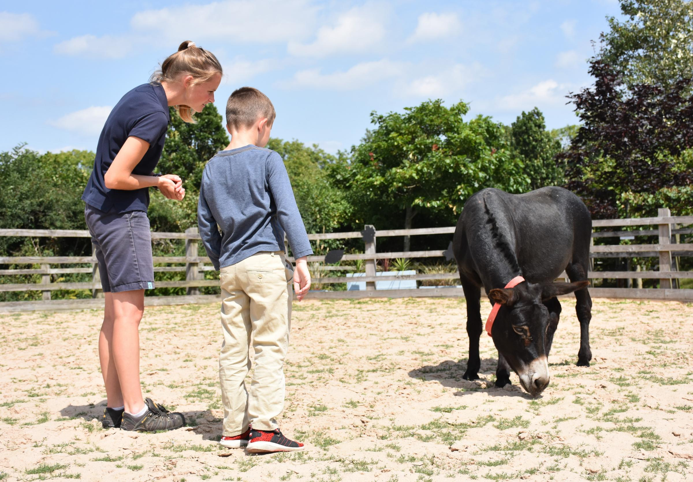 SUPPORT: Clients of Pete's Dragons visit The Donkey Sanctuary