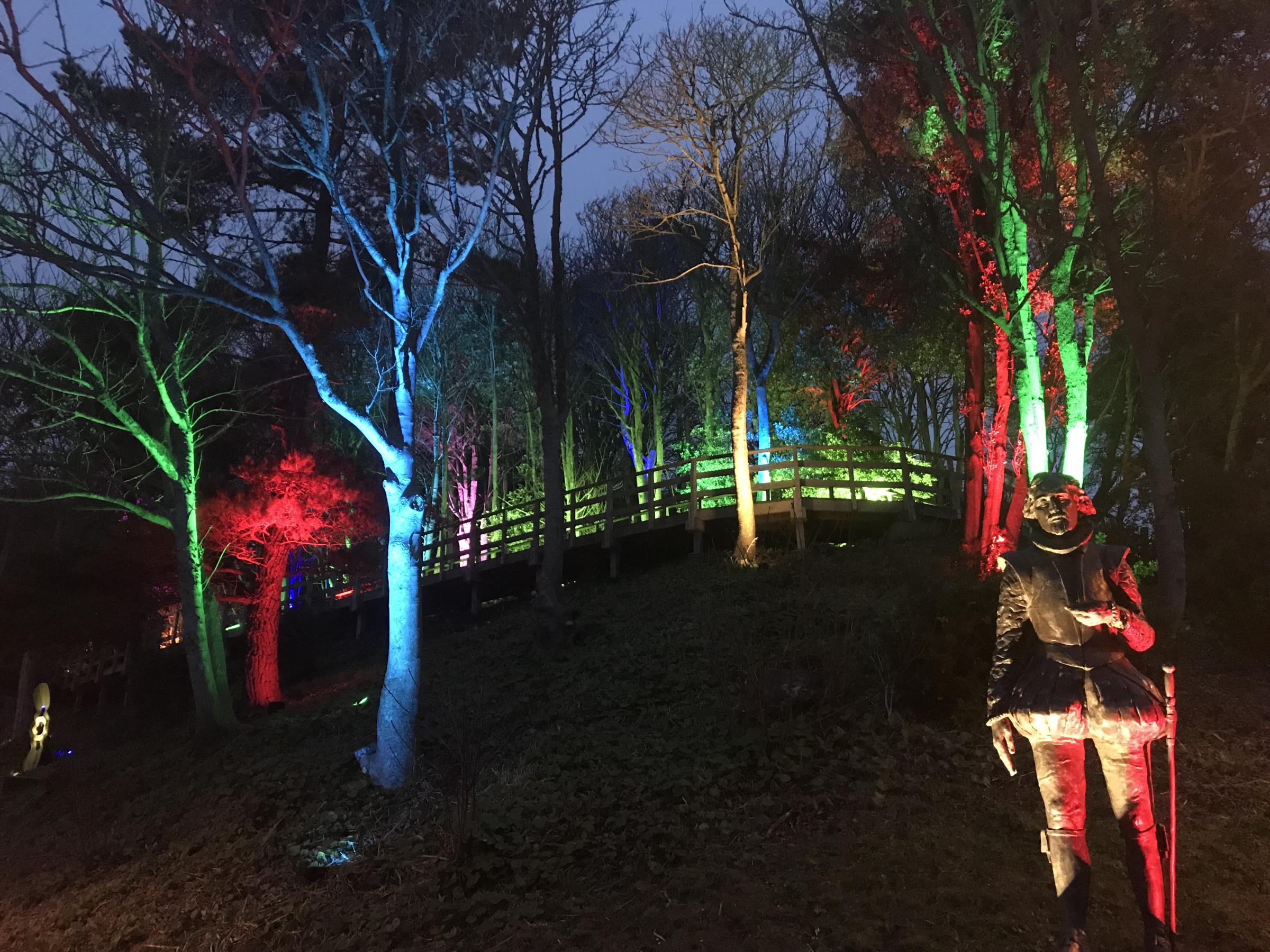 Abbotsbury Subtropical Gardens comes Lyme Regis as new lights to be switched on